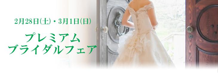 2015_02_03specialfair_title